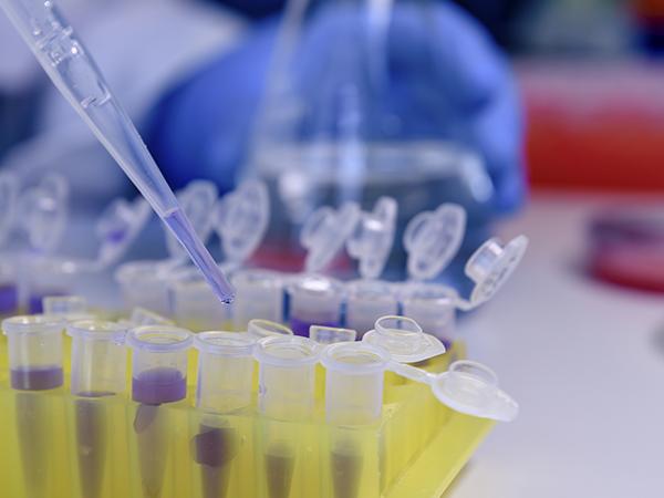 Beneficio para estudiantes de la PUCE en pruebas PCR